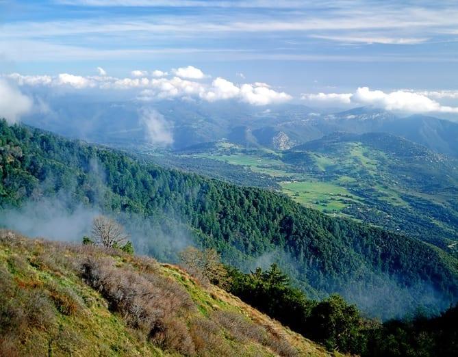 Mt.Palomar