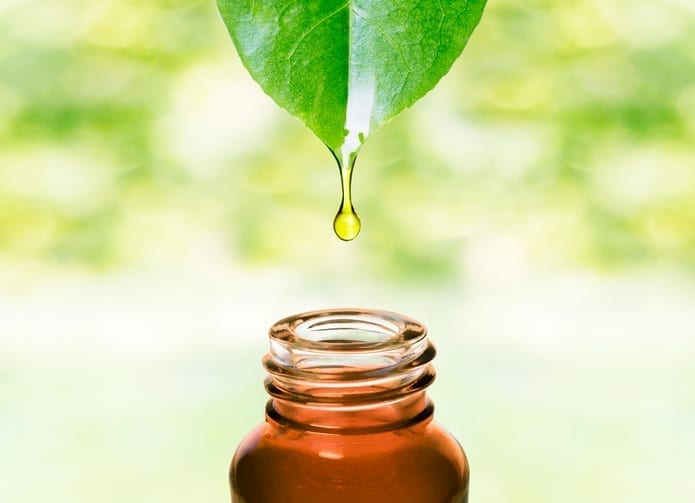 oil dripping from leaf - chafing home remedies - body glide
