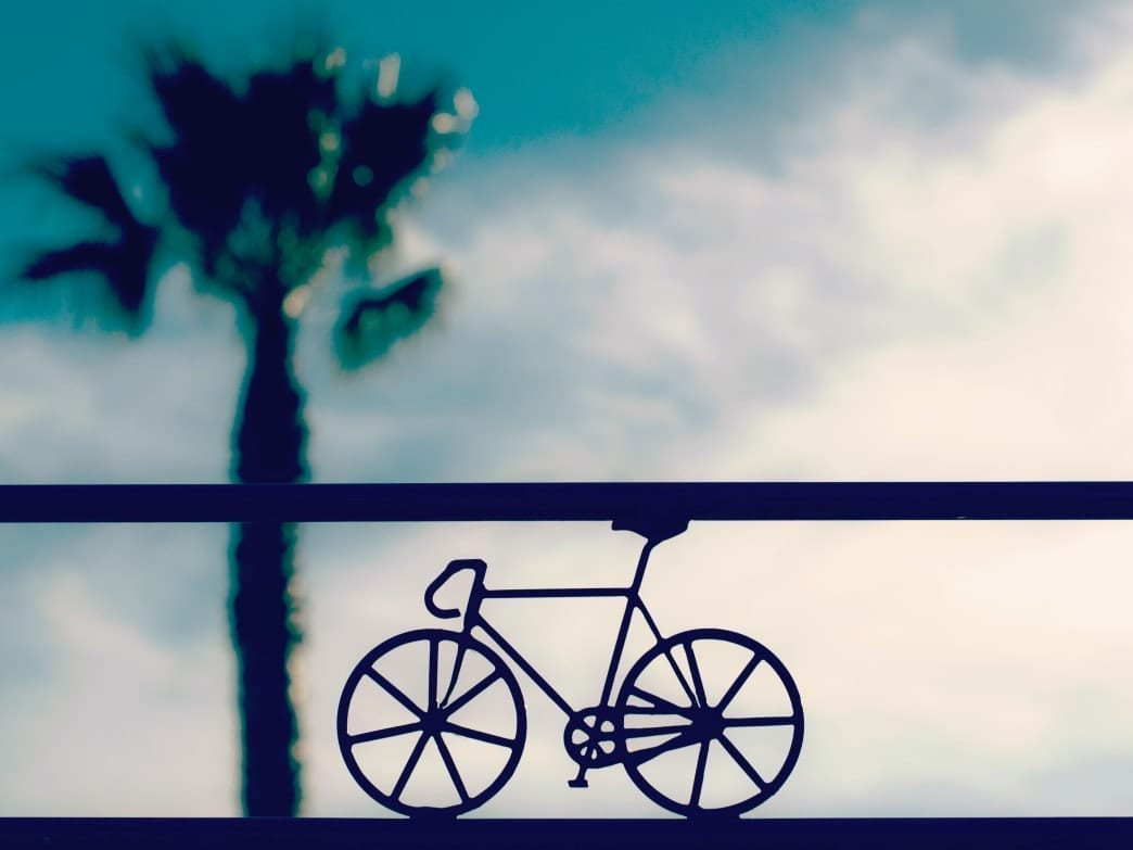 Bike Outline in front of clouds and palm tree